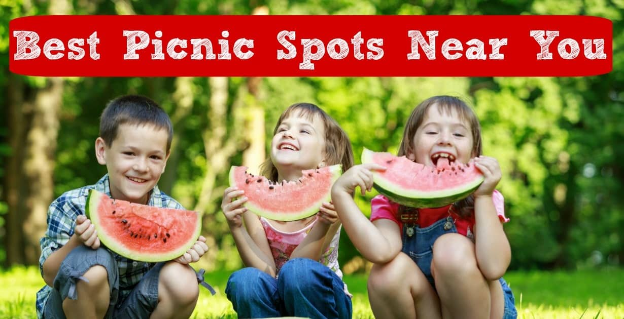 Best Picnic Spots in Kansas City for Kids