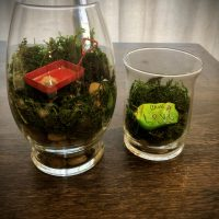 "Make Mason Jar Terrariums with this ""How to"""
