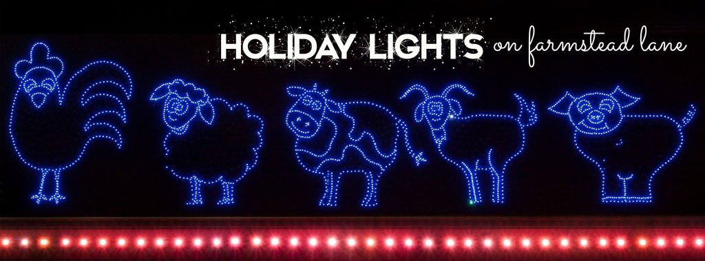 This image has an empty alt attribute; its file name is Deanna-Rose-Farmstead-Holiday-Light-Show-1024x379.jpg