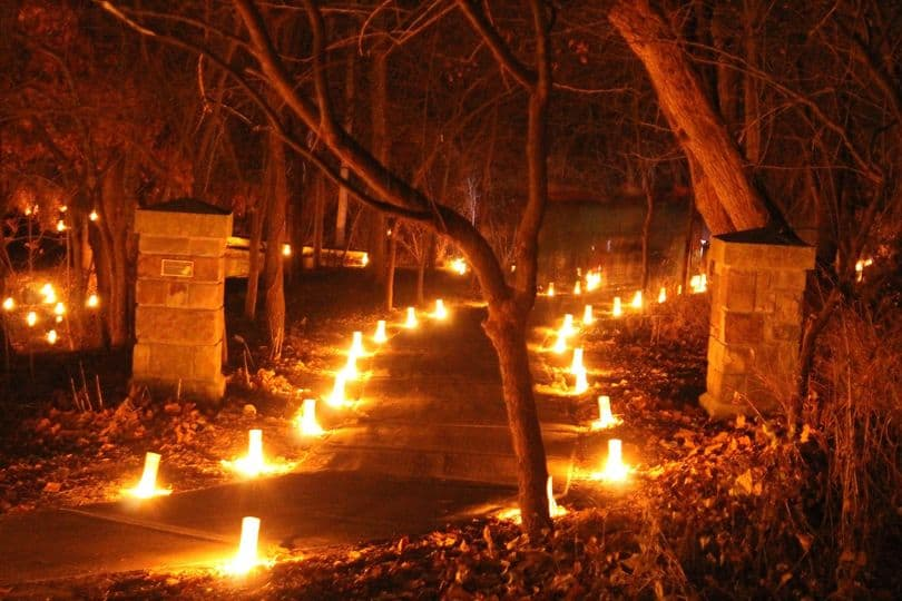 This image has an empty alt attribute; its file name is Holiday-Luminary-Walk-at-OP-Arboretum.jpg
