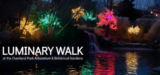 Holiday Luminary Walk at Overland Park Arboretum