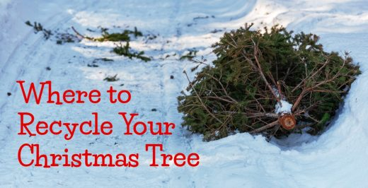 Where-to-Recycle-Your-Christmas-Tree-in-Kansas-City