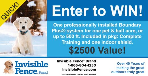 Invisible Fence Enter2Win Featured Image (1) (002)